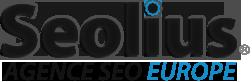 logo-seolius
