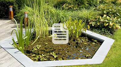 Technic' Jardins : + 89 000 € HT de C.A. généré avec Plus que PRO